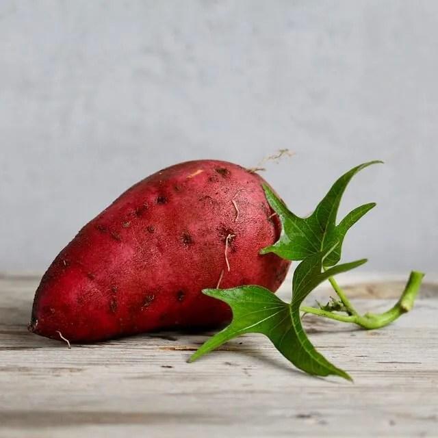 yams vs sweet potatoes