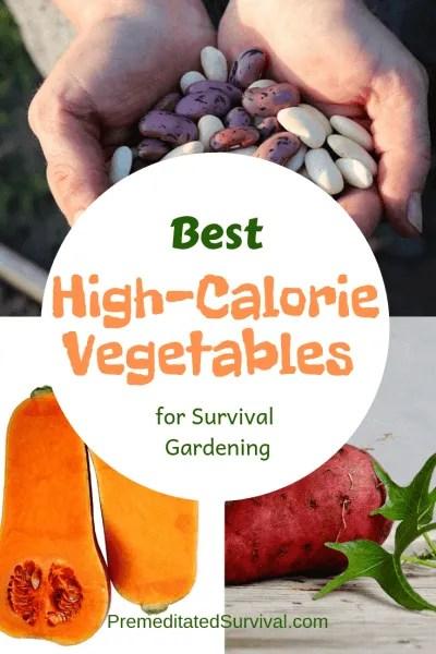 best high calorie vegetables survival gardening