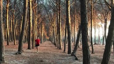 Sommes-nous faits pour courir ?