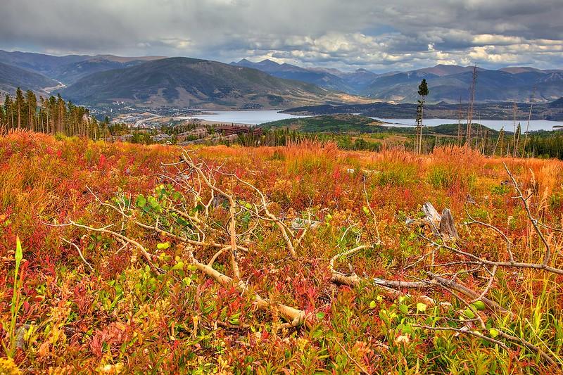 Lily Pad Lake Trail