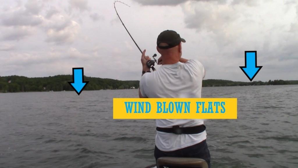 Wind Blown Flats