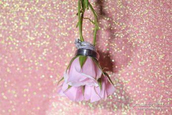 Rings by Kay Jewelers and Helberg Diamonds