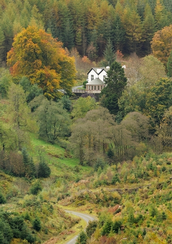 The Cottage in the Woods- Whinlatter forest near Keswick- Cumbria