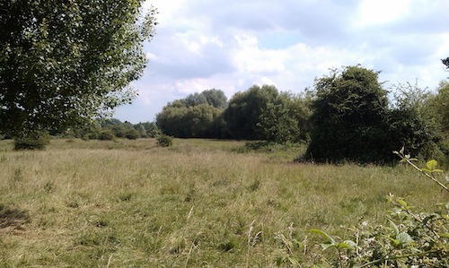 Purwell Meadows