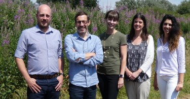 Growing Demand Leads Architects to Expand Landscape Team