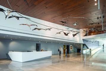 Steinhardt Museum
