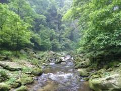 ''parc national en bas des montagnes