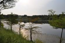 Twisted Tine Pond
