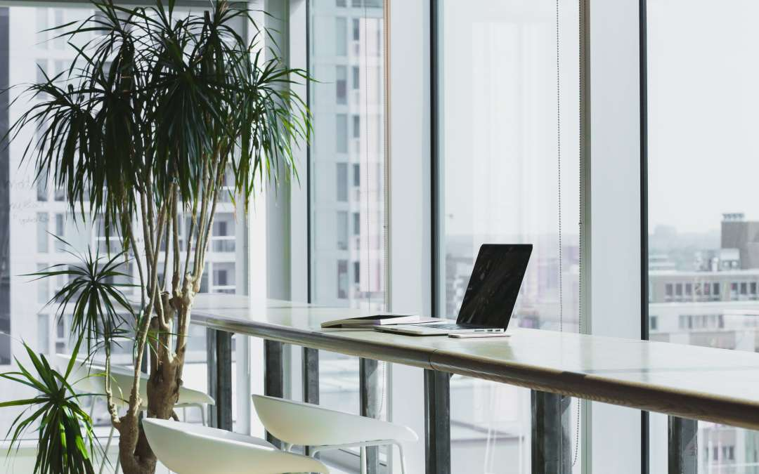 3 Reasons why you should have your Office Windows Tinted