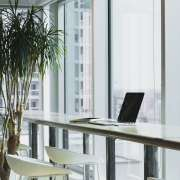 3 reasons to have your office windows tinted