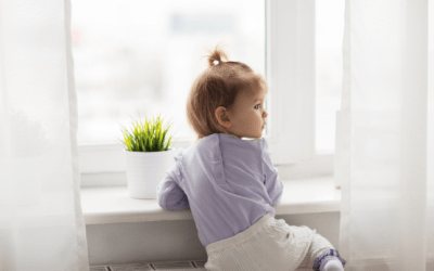 3 Facts About Residential  Window Film – Our Homeowners' Guide