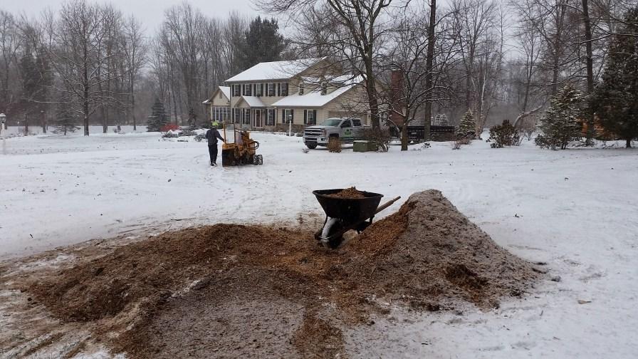 Stump removal in Denver PA