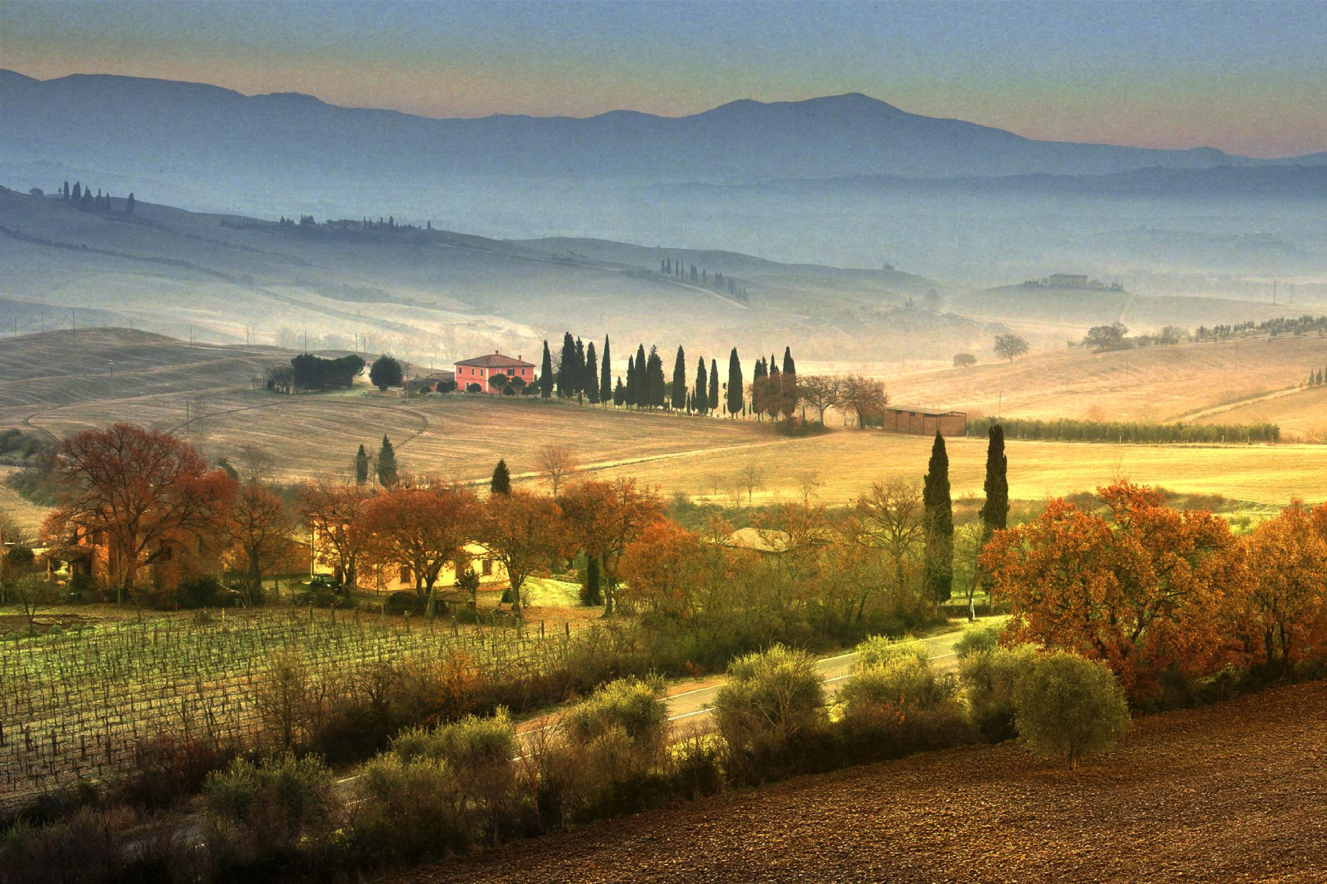 2017 ANDREA RONTINI Val d'Orcia