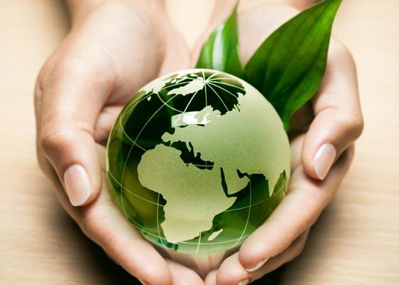 desarrollo-local-mundo-global