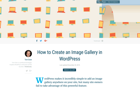 Add an image gallery to your website with this guide.