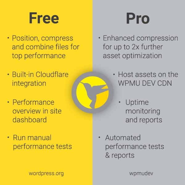 Hummingbird comparison of free versus pro features