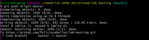 Screenshot of command line git push command to remote repo