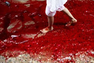 Bloody streets in Dhaka