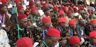 Ohanaeze condemns shoot-at-sight order on Igbo land