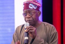 Tinubu challenges Atiku, demands explanation over Halliburton bribery scandal