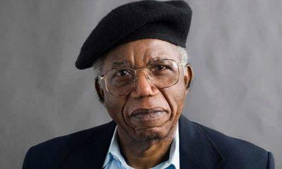 Google honours Achebe on posthumous birthday