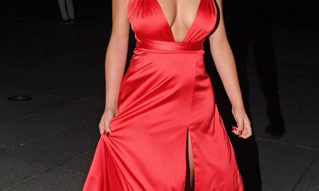 Sexy Demi Rose flaunts her ample cleavage in a plunging red silk dress (photos)
