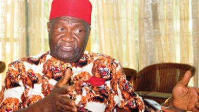 RUGA: Ohanaeze accuses northern coalition of treason