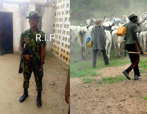 Fulani herdsmen kill young soldier in Benue, chop off his penis