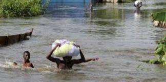 Flood kills 3, displaces several others in Adamawa