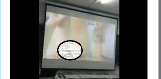 University lecturer mistakenly plays hardcore porn in class during a presentation (Video)
