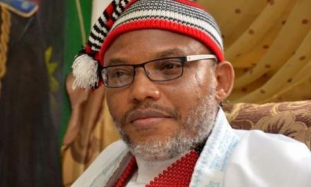 2019 Election: Nnandi Kanu tells Igbos who to vote today