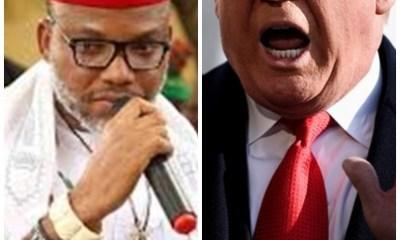 Nnamdi Kanu to write Trump