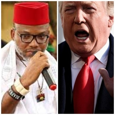 US election 2020: Trump is like Biafra – Nnamdi Kanu