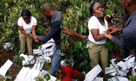 Female Corps member allegedly caught destroying ballot papers in the bush