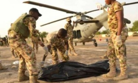 Helicopter blade chops off the head of Air Marshal In Borno State (Photo)