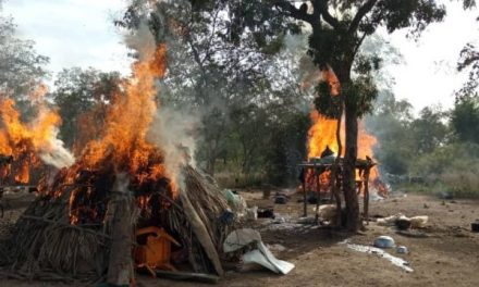 NAF kills 20 in Zamfara bandits' camp