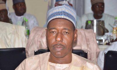 Borno Gov. Zulum