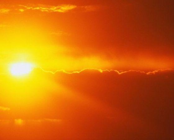 Способы преодоления теплового стресса в разведении птицы