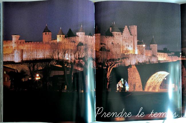 Voyageons Ludique - Patrimoine Mondial - livre - La France au Patrimoine Mondial