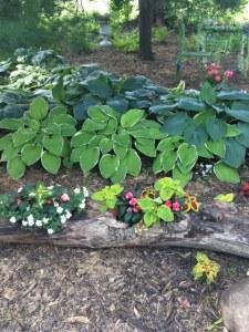 Farmington Lake vintage garden