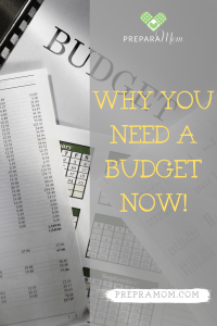 why a budget is important Pinterest Image