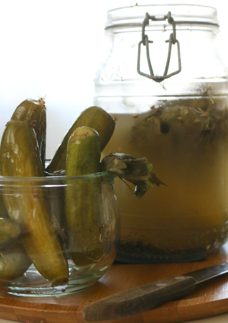 Easy Lacto-Fermented Dill Pickles -These Easy Lacto-Fermented Dill Pickles are a great way to preserve those cucumbers naturally with live enzymes and probiotics. It's originally made with dill and garlic, but you can add your favorite spices to this easy ferment.