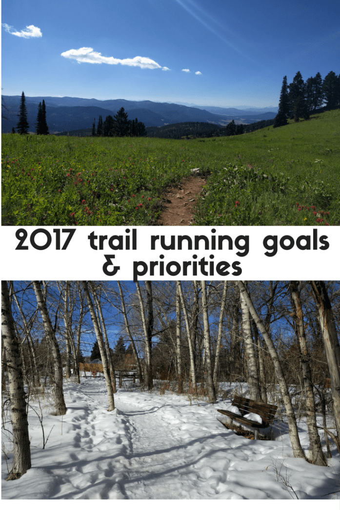 2017 trail running goals - planning for a 38K trail race
