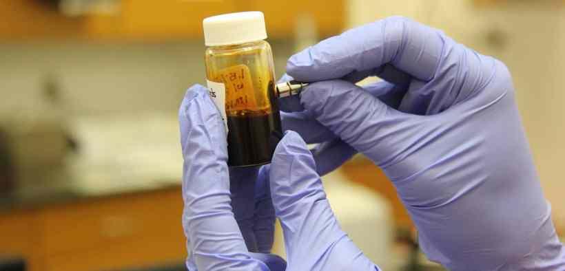bird flu experiments Yoshi Kawaoka