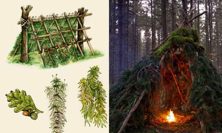 The Most Practical Survival Shelter You May Have Overlooked