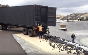 black balls la reservoir