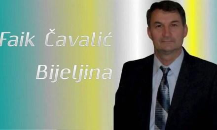 Faik Čavalić – Evo ovu rumen ružu