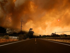 Sonoma County officials opted NOT to send mass evacuation alert on deadly fire???????