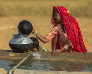Study: XDR typhoid in Pakistan carries added resistance genes