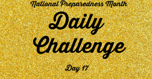 National Preparedness Month Daily Challenge: Day 17